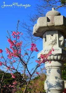 Nago Central Park